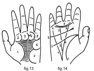 Palmistry - Tubercles